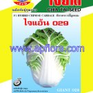 Apichaya Flora Vegetable seeds Chinese Cabbage-Giant-029
