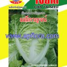 Apichaya Flora Vegetable seeds Chinese Cabbage-Maneekarn