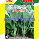 Apichaya Flora Vegetable seeds Chinese Kale-Chaokunthip