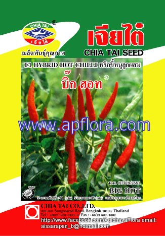 Apichaya Flora Vegetable seeds Hot chili-Big Hot