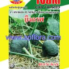 Apichaya Flora Vegetable seeds Pumpkin-Bungkarn