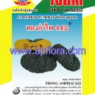 Apichaya Flora Vegetable seeds Pumpkin-Thong am pai342