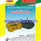 Apichaya Flora Vegetable seeds Pumpkin-Thong am pan346