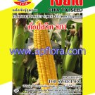 Apichaya Flora Vegetable seeds Sweet Corn-TOP-SWEET-801