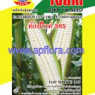 Apichaya Flora Vegetable seeds Sweet Corn-TOP-WHITE-365