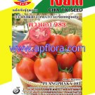 Apichaya Flora Vegetable seeds Tometo-Puangpaka983