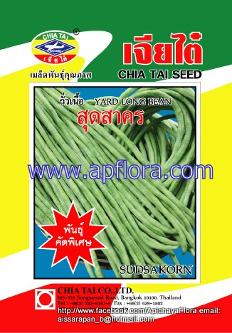 Apichaya Flora Vegetable seeds Tometo-Puangpaka983
