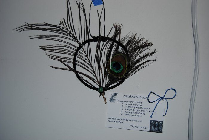 Peacock feather catcher
