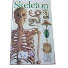 Eyewitness - Skeleton