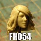 FH054