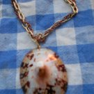 Polished Limpet Shell Necklace #7
