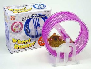 Hamster in a wheel toy runner mouse realistic exercise