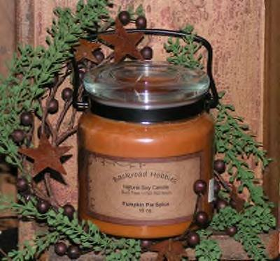 16 oz Soy Candle with Swivel Handle