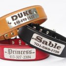 "Personalized Leather dog collar with engraved stainless steel personalized plate.1.5'"" Width."