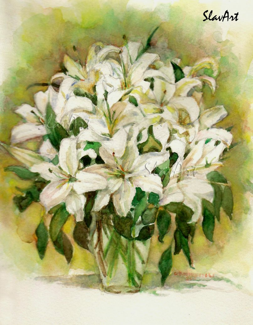 Lilies Watercolor print painting Fine art Realistic white garden flowers Home decor Illustration