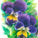 Purple Pansies Print Watercolor Floral Painting Vibrant colors Realistic Summer Flowers Home Art