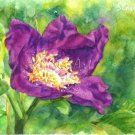 Purple Flover Print Watercolor Panting Realistic Garden Flowers Home Decor