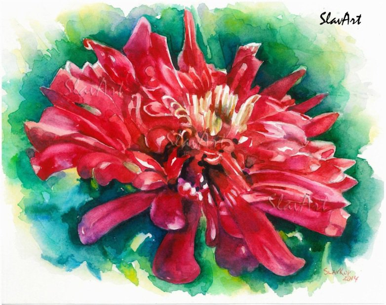 Red flover Dahlia Watercolor painting Fine art Realistic Summer garden Home decor Gift