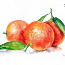 Fruit Art - Painting of 0ranges Food Still Life Print Watercolor Painting Fine Art Home Decor