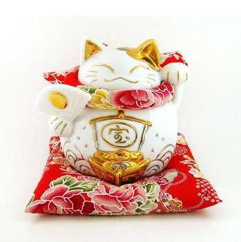 A0075 - Japan Genuine cattery Tao Yue Tong