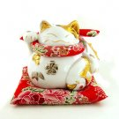 A0084 - Japan Genuine Lok Tong Cattery color hold the fish