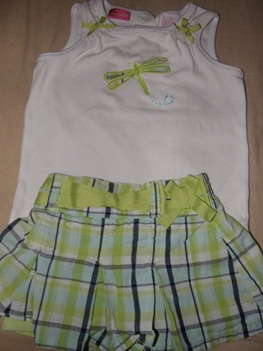 Girls size 4t dragonfly outfit