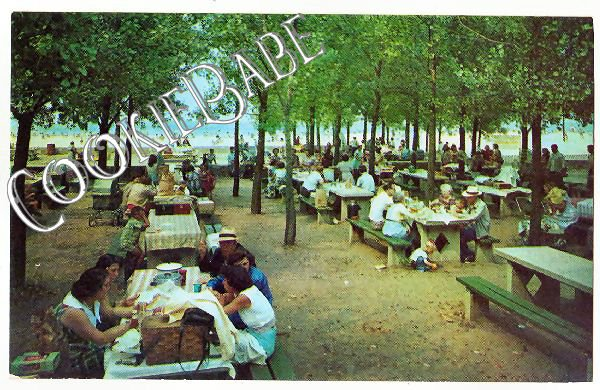 Vtg Michigan City IN Postcard Picnic Area Washington Pk