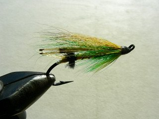 Salmon Fly f7