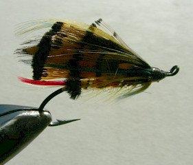 Salmon Fly f9
