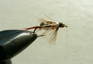 Rainbow Trout Streamer f48