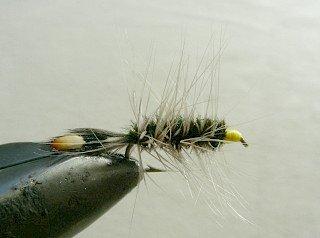 Dry Flies & Wulfs f71