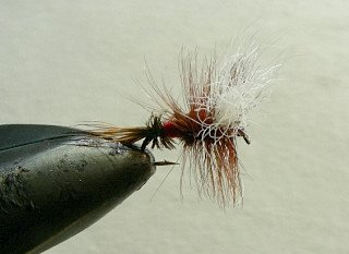 Dry Flies & Wulfs f73