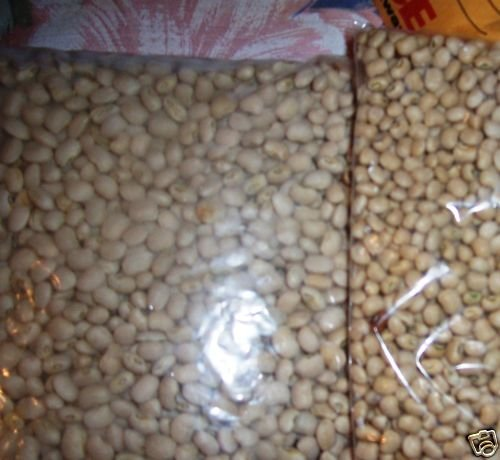 MISSISSIPPI CREAM PEAS  Southern Sows 30-50 ft 1oz