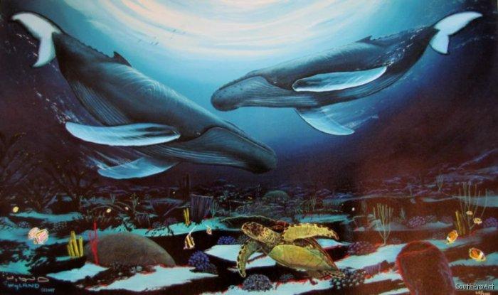 WYLAND HUMPBACK DANCE whale sea turtleHS&# CANVAS COA