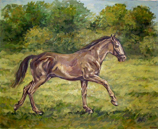ANRI BROWN HORSE ORIG OIL PAINTING CANVAS Mustang Colt