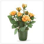#36231 Orange Roses