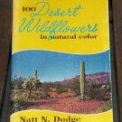 Desert Wildflowers, Natt N. Dodge
