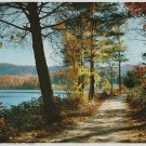 Vintage Print Autumn Scene Down A Woodland Lane 8x10