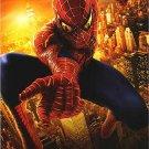 Spider-Man 2  Destiny  Original Movie Poster Single Sided 27 X40