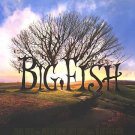 Big Fish Regular Double Sided Original Movie Poster 27x40