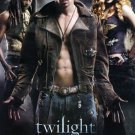 Twilight Villains Original Movie Poster Single Sided 27 X40