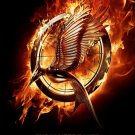 Hunger Games: Catching Fire Adv A  Original Movie Poster Double Sided 27x40