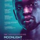 Moonlight Critics Preview  Double Sided Original Movie Poster 27x40