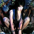 Elvira Mistress of the Dark Cassandra Peterson  Style J Poster Style E 13x19