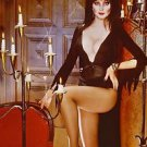 Elvira Mistress of the Dark Cassandra Peterson Poster Style G 13x19