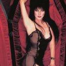 Elvira Mistress of the Dark Cassandra Peterson  Style D Poster Style E 13x19