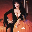 Elvira Mistress of the Dark Cassandra Peterson  Style H Poster Style E 13x19
