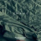 Shame Double Sided Original Movie Poster 27x40 inches