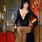 Elvira Mistress of the Dark Cassandra Peterson  Style I Poster Style E 13x19