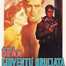 Rebel Without A Cause Movie Style D Poster 13x19 inches